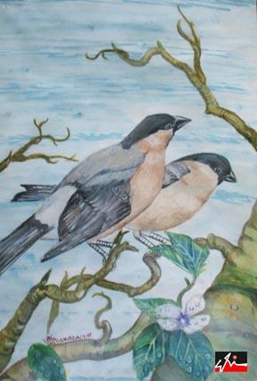 medium - watercolor